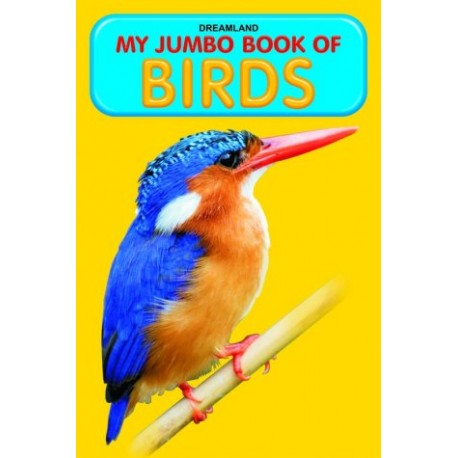 My Jumbo Book of Birds