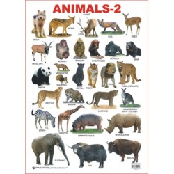 Educational Charts Series: Animals-2